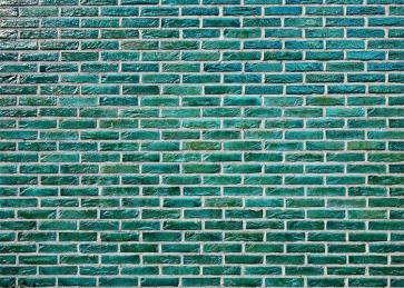 Retro Personalise Green Brick Wall Backdrop Studio Video Photography Background Decoration Prop