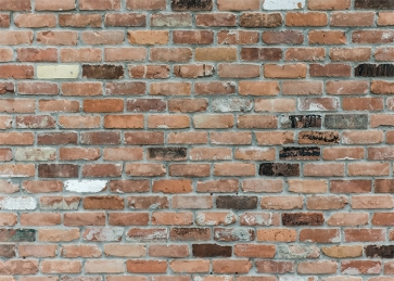 Outdoor Rustic Brick Wall Backdrops Studio Party Photography Background