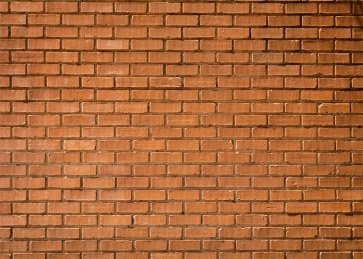 Outdoor Retro Brown Rustic Brick Wall Backdrops Studio Party Photography Background