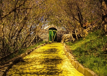 Autumn Forest Yellow Brick Road Backdrop Stage Party Photography Background