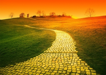 Green Grass Yellow Brick Road Backdrop Stage Party Photography Background