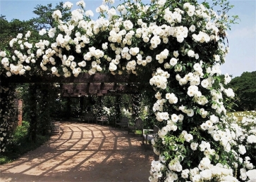 White Flower Pergola Corridor Wedding Backdrop Photography Background