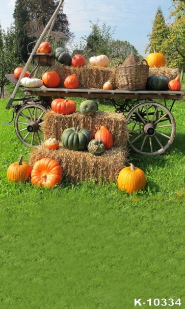 Outdoor Pumpkin Haystack Car Theme Photography Halloween Backdrops