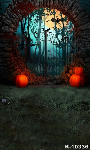 Iron Gate Stone Wall Bat Pumpkin Vinyl Halloween Photography Backdrops
