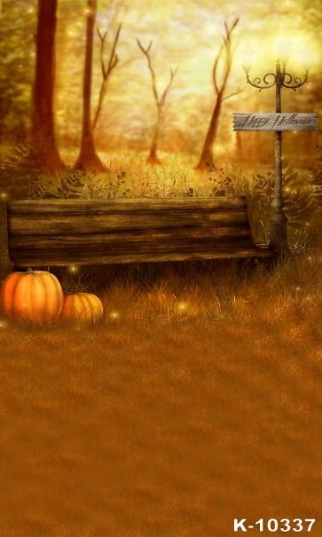 Park Street Light Wooden Bench Pumpkin Vinyl Photography Halloween Backdrops