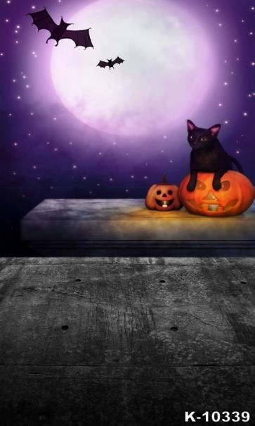 Halloween Moon Bat Cat Pumpkin Theme Vinyl Photography Backdrops
