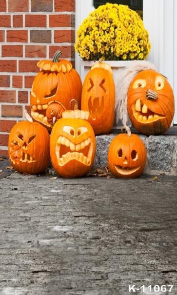 Various Styling Style Pumpkin Flower Stone Vinyl Photography Halloween Backdrops