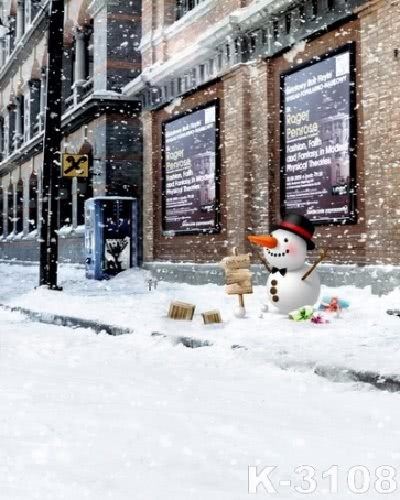 Snowing Street Indicator Christmas Photo Background Photography Backdrops