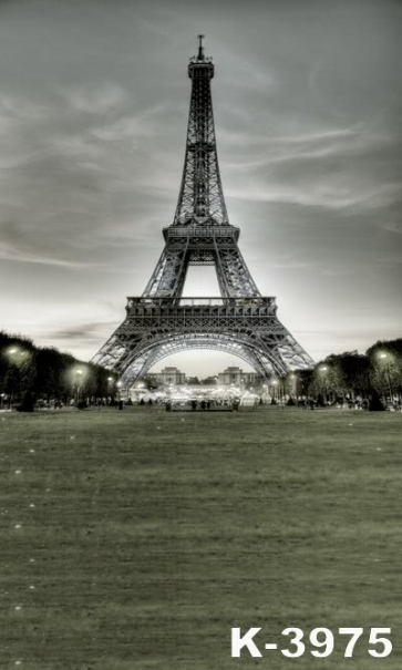 Paris Eiffel Tower City Night Vinyl Photography Background Backdrops
