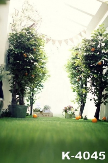 Horizontal View Green Trees Indoor Vinyl Wedding Photography Backdrops