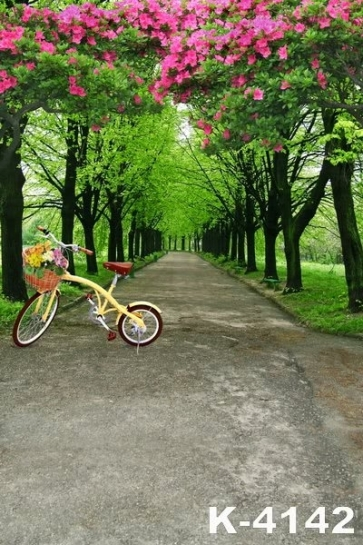 Scenic Backdrops Forest Path Bicycle Vinyl Photography Garden Backdrop