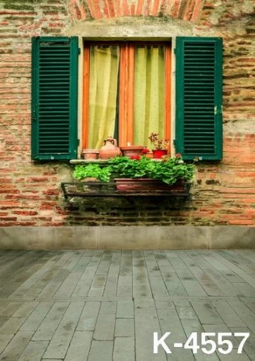 Scenic Backdrops Beautiful Windowsill Green Plants Building Studio Background Vinyl Photography Backdrops