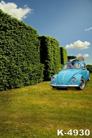 Scenic Backdrops Blue Car on the Lawn Vinyl Photography Backdrops