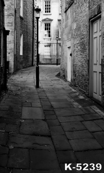 Narrow Alley Flagstone Walk Building Vinyl Backdrops Studio Background