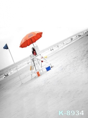 Scenic Seaside Beach Oblique Background Drops for Photography
