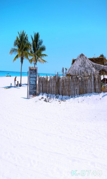 Thatched Cottage Coconut Trees Seaside Beach Drop Studios Backdrops