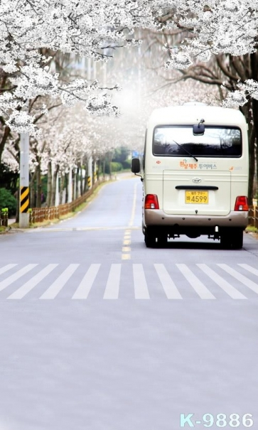 Plum Blossom on Both Sides of the Road Bus Scenic Backdrops Vinyl Photography Backdrops