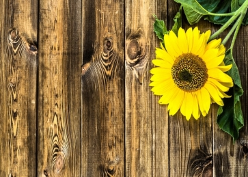 Vertical Texture Wood Picture Backdrop with Yellow Sunflower