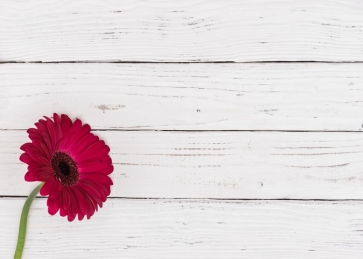 White Horizontal Texture Wood Camera Backdrops with Rose Red Flower