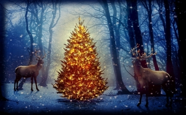 Christmas Tree David's Deer in Forest Photographic Backdrops