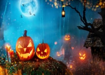 Pumpkin Theme Halloween Party Backdrop Decoration Prop Photography Background