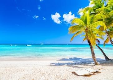 Palm Tree Leaf Sandy Ocean Beach Backdrop Baby Birthday Bridal Shower Party Background