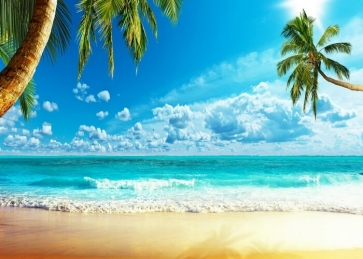 Blue Sky White Clouds Summer Ocean Beach Backdrop Party Photography Background