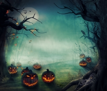 Forest Night Sky Moon Pumpkin Party Photography Halloween Vinyl Backdrops