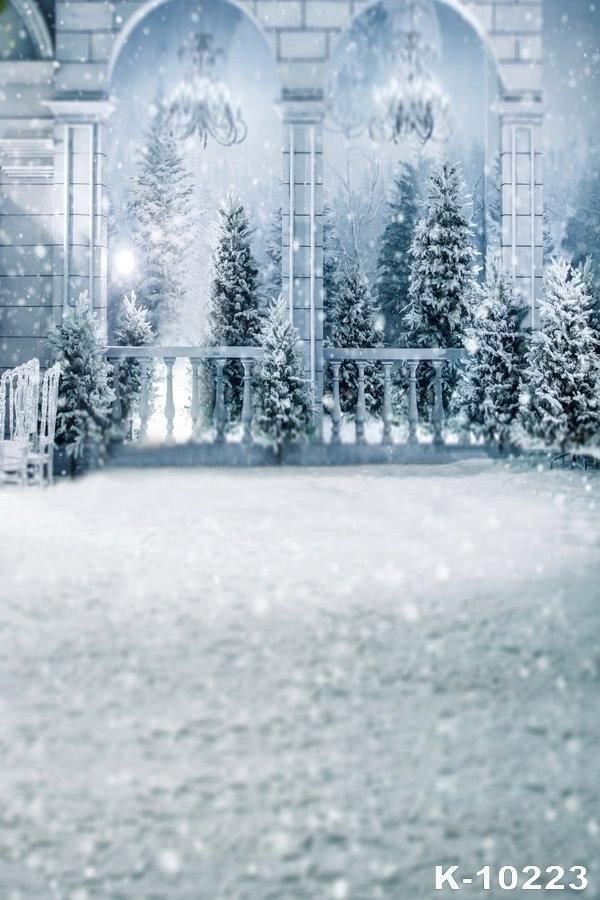 Romantic Winter White Snow Palace Wedding Photography