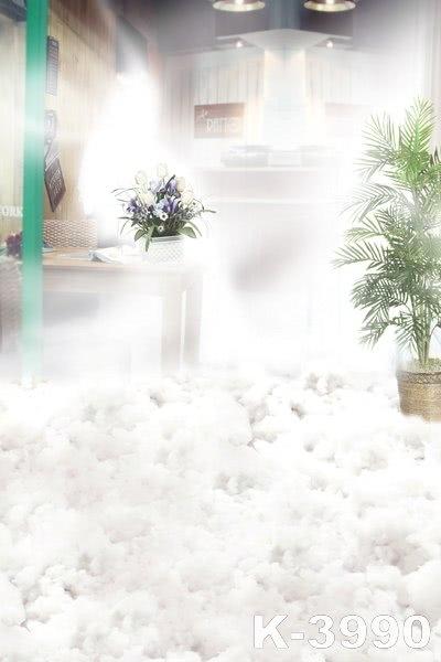 Dreamy Indoor Bright Wedding Photo Backdrops Studio Background