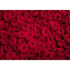 Red Rose Flower Background Valentine's Day Backdrop
