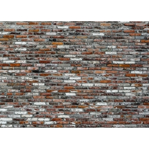 Retro Brick Wall Backdrop Studio Photography Background Video Decoration Prop