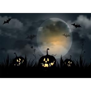 Full Moon Scary Dark Pumpkin Bat Halloween Backdrop Party Photography Background