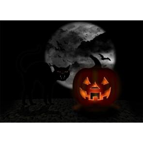 Terror Dark Cat Scary Pumpkin Halloween Backdrop Studio Stage Photography Background
