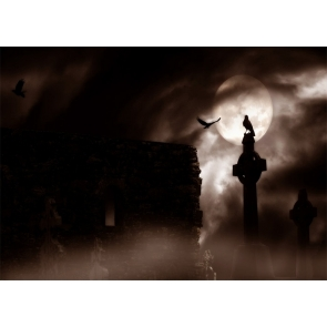 Terrifying Cemetery Scary Graveyard Backdrop Halloween Party Studio Stage Photography Background