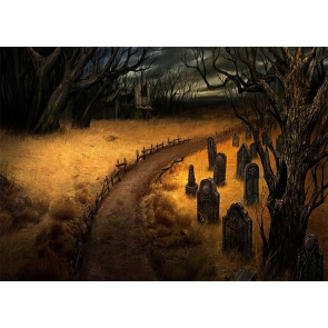 Gold Grass Dark Forest Cemetery Graveyard Backdrop Halloween Party Photography Background
