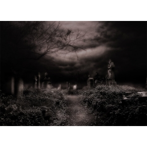 Scary Terrifying Dark Cemetery Graveyard Halloween Party Backdrop Studio Stage Photography Background