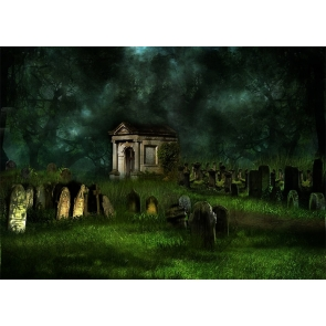 Scary Terrifying Cemetery Graveyard Forest  Halloween Backdrop Party Stage Photography Background