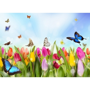 Colorful Flower Butterfly Backdrop Baby Shower Birthday Party Photography Background
