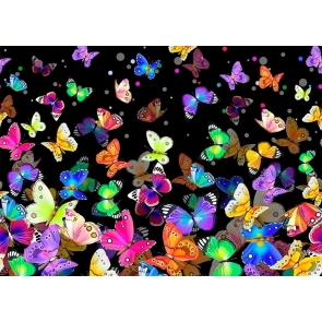 Black Background Sparkly Colorful Butterfly Backdrop Party Studio  Photography Prop