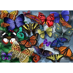 Personalized Colorful Butterfly Party Backdrop Studio Photography Background