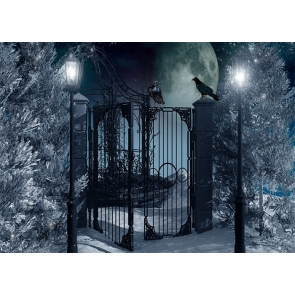 Street Lamp Lron Fence Gate Crow Halloween Backdrop Party Stage Photography Background