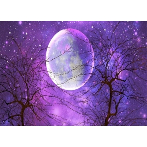 Purple Sky Stars Large Full Moon Backdrop Party Stage Studio Photography Background