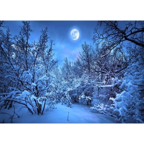Night Snow Covered Forest Winter Scene Backdrop Christmas Party Photography Background