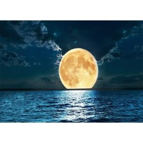 At Night Gold Full Moon Backdrop Party Stage Studio Photography Background