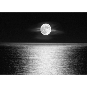 At Night Water Surface Full Moon Backdrop Party Stage Studio Photography Background