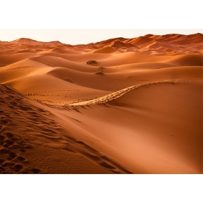 Wavy Sand Pile Desert Backdrop For Stage Photography Background