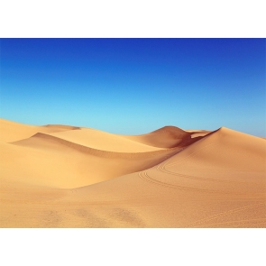Blue Sky Desert Scenic Backdrop Stage Party Photography Background