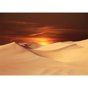 Sunrise Desert Backdrop For Stage Photography Background