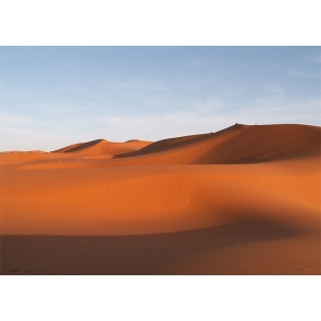 Brown Sand Scenic Desert Backdrop For Stage Photography Background